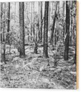 Spring Burn  Wood Print