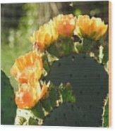 Spring Cactus 14 Wood Print
