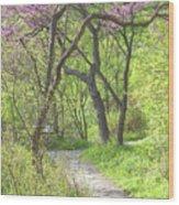 Spring Canopy Wood Print