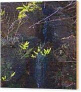 Spring Cascade Wood Print