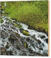 Spring Cascades Wood Print