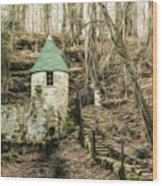 Spring Castle - Rock Island Park Tn Art 585 Wood Print