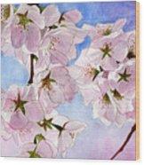 Spring- Cherry Blossom Wood Print