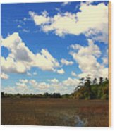 Spring Clouds Over The Marsh Wood Print