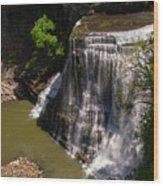 Spring Color At Burgess Lower Falls Wood Print
