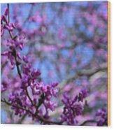 Spring Color Pop Wood Print