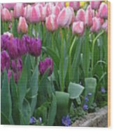 Spring Colors Wood Print