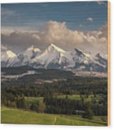 Spring Comes To The High Tatra Mountains In Poland Wood Print