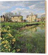 Spring Daffodils, Ramsey Village Pond, Cambridgeshire, England Wood Print