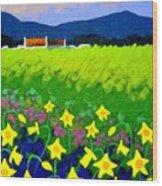 Spring Daffs Ireland Wood Print