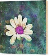 Spring Daydreams Wood Print