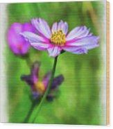 Spring Desires 2 Wood Print