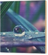 Spring Droplet Wood Print