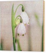 Spring Duet Wood Print