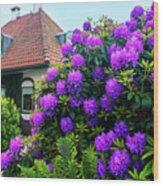 Spring  Dutch Garden  Wood Print