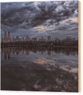Spring Evening Central Park Nyc 2 Wood Print