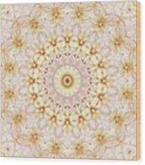Spring Fantasy Floral Mandala Wood Print