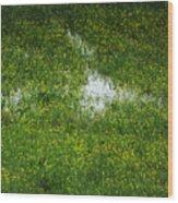 Spring Field Memphis Wood Print
