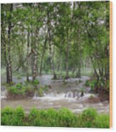 Spring Floodwaters. Altai Wood Print
