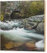 Spring Flow At Eagle Creek Wood Print