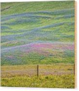 Spring Flower Bloom  Wood Print