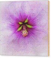 Spring Flower Frill Wood Print