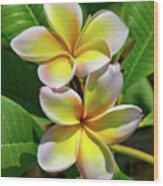 Spring Flowers 8 Wood Print