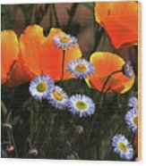Spring Flowers In Payson Arizona Wood Print