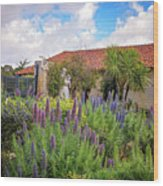 Spring Flowers In The Carmel Mission Garden Wood Print