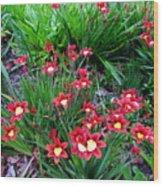 Spring Flowers Wood Print by Joyce Woodhouse