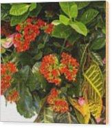 Spring Flowers No.12 Wood Print