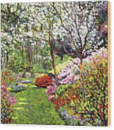 Spring Forest Vision Wood Print by David Lloyd Glover