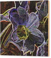 Spring Garden Art Wood Print