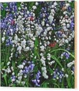 Spring Garden Wood Print