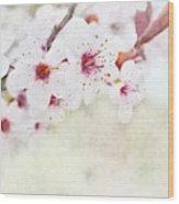 Spring Glory 1 Wood Print