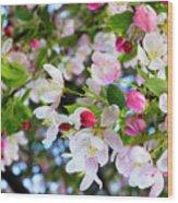 Spring Has Sprung Wood Print