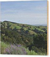 Spring Hills Wood Print