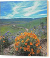 Spring Hilltop View Wood Print