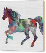 Spring Horse 2 Wood Print