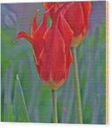 Spring Impression Wood Print