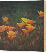 Spring In A Poppin' Wood Print
