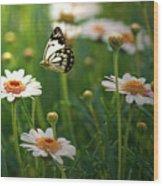 Spring In Air. Wood Print