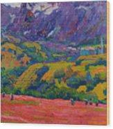 Spring In Bergell Wood Print