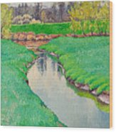 Spring In Bloom Landscape Wood Print