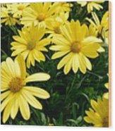 Spring In Bloom Wood Print