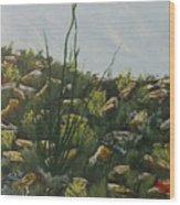 Spring In Borrego Wood Print