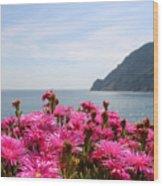 Spring In Cinque Terre Wood Print