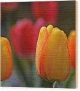 Spring In Colors Wood Print