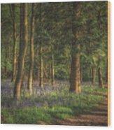 Spring In Haywood No 2 Wood Print