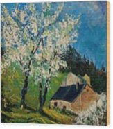 Spring In Hierges  Wood Print